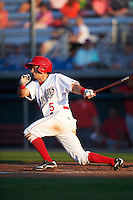 Auburn Doubledays shortstop Angelo La Bruna (5) at bat during a game against the Williamsport Crosscutters on June 25, 2016 at Falcon Park in Auburn, New York.  Auburn defeated Williamsport 5-4.  (Mike Janes/Four Seam Images)