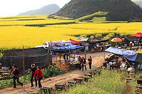 Luoping, Yunnan. Le village de Jinji Lin, sur le chemin qui mène au panorama des collines du coq d'or, des citadines croisent les tentes des apiculteurs. Près de 10 millions de personnes visitent la région de Luoping durant la floraison du colza.///Luoping, Yunnan. The village of Jinji Lin. Tourists from the cities come across the beekeepers' tents on the road leading to the panoramic views from the Hills of the Golden Rooster. Nearly 10 million people visit the region during the flowering of the rape.