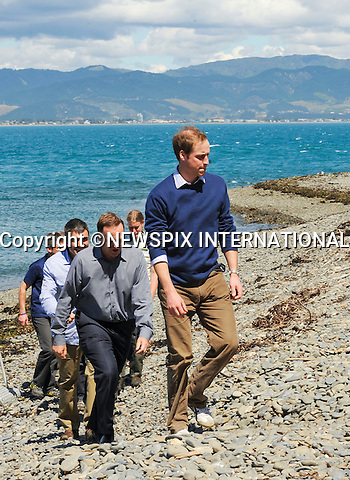 "PRINCE WILLIAM.Prince William accompanied by the Prime Minister John Key visited a Nature Reserve located on Kapiti Island, which houses some of the world's most endangered birds.The Prince was once again meet with a traditional Maori Hongi. William also held a Kiwi bird, meet some traveling students and listened to a talk about the Islands activities_ Kapiti Island, Kapiti Coast, New Zealand_18/01/2010 .Mandatory Credit Photo: ©DIAS-NEWSPIX INTERNATIONAL..**ALL FEES PAYABLE TO: ""NEWSPIX INTERNATIONAL""**..IMMEDIATE CONFIRMATION OF USAGE REQUIRED:.Newspix International, 31 Chinnery Hill, Bishop's Stortford, ENGLAND CM23 3PS.Tel:+441279 324672  ; Fax: +441279656877.Mobile:  07775681153.e-mail: info@newspixinternational.co.uk"