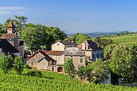 France, Côte-d'Or (21), Monthelie, le village et le vignoble // France, Cote d'Or, Monthelie, the village and vineyard