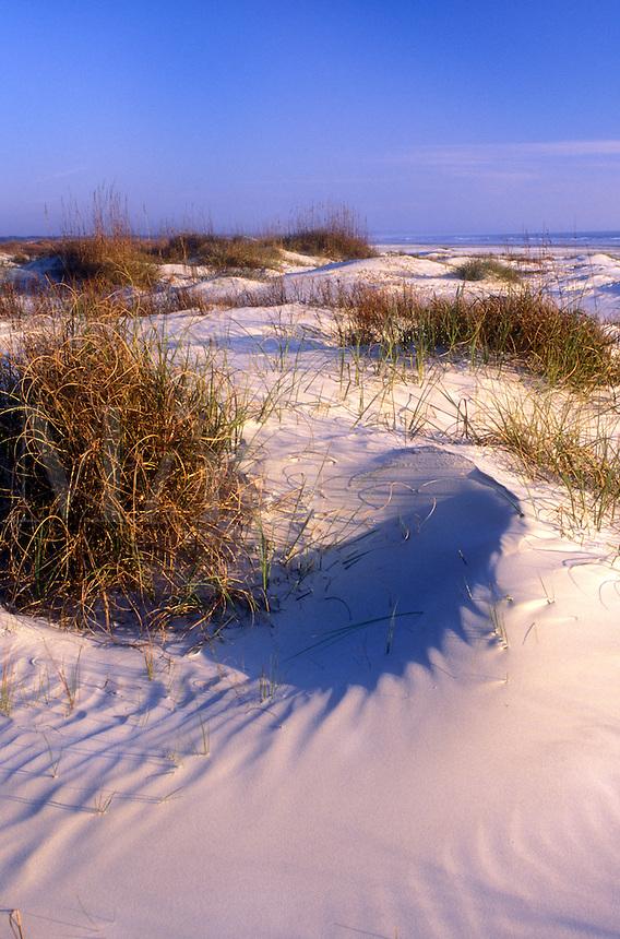 AJ1551, Cumberland Island, sand dune, Georgia, Wind swept sand dunes on the white sand beaches of Cumberland Island National Seashore, Georgia.