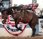 Wes Stevenson competes in the bareback bronc riding event at the Reno Rodeo, in Reno, Nev. on Friday night, June 22, 2012..Photo by Cathleen Allison