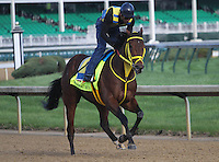 May 1, 2014: Wildcat Red gallops in preparation for the Kentucky Derby at Churchill Downs in Louisville, KY. Zoe Metz/ESW/CSM