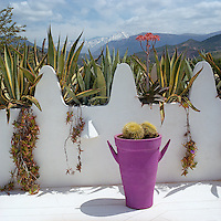 The agaves growing in dedicated containers on the roof terrace preface a view of the snow-covered Atlas Mountains