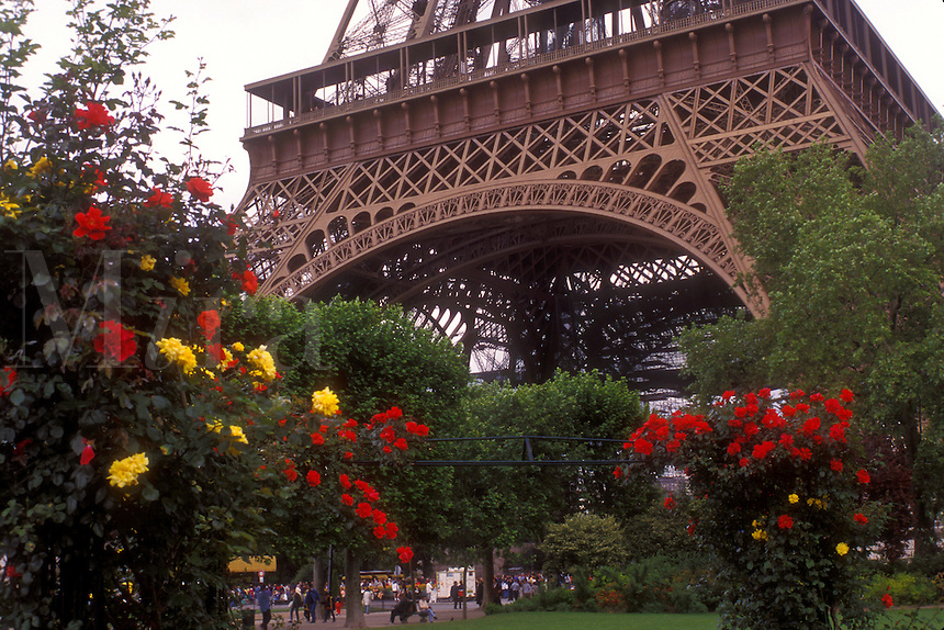 AJ1621, Paris, Eiffel Tower, France, City of Light, Europe, Flowers (roses) adorn the grounds around the Eiffel Tower in Paris, France.