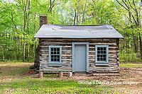 63895-15814 Cabin at Log Cabin Village in spring Kinmundy IL
