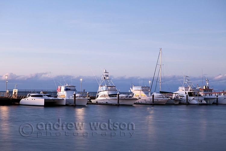 Boats in the Marlin Marina.  Cairns, Queensland, Australia