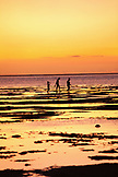 MAURITIUS, a family searches for food in the flats at low tide, Bel Ombre, Indian Ocean at sunset