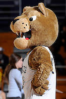 9 January 2010:  FIU's mascot, Roary, entertains the crowd during a break in the action as the Troy Trojans defeated the FIU Golden Panthers, 61-59, at the U.S. Century Bank Arena in Miami, Florida.