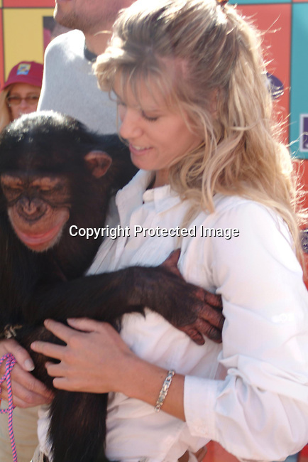 Sable the chimp<br />Hollywood Families Show Off Their True Colors AT &ldquo;EXPRESS YOURSELF 2003&rdquo;<br />72 Market Street<br />Venice, CA, USA<br />Sunday, November 02, 2003<br />Photo By Celebrityvibe.com/Photovibe.com
