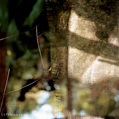 Composition of light and shade and texture and pattern as the sun shines through some hession