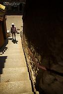 Image Ref: SWISS054<br /> Location: Schaffhausen, Switzerland<br /> Date of Shot: 20th June 2017