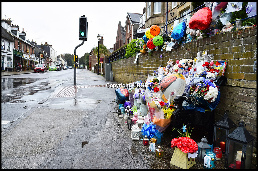 BNPS.co.uk (01202 558833)Pic: GrahamHunt/BNPS<br /> <br /> Floral tributes at the peclican crossing in Wareham where the tragedy happened.<br /> <br /> A lorry driver who sarcastically clapped a motorist moments before he knocked down and killed a young boy on a pedestrian crossing was today cleared of causing death by dangerous driving.<br /> <br /> Dean Phoenix admitted he made a mistake by failing to see a red light at the crossing to allow three-year-old Jaiden Mangan and his family walk across.<br /> <br /> Phoenix, 44, pulled away without seeing them and collided with Jaiden, who suffered fatal chest and abdominal injuries.<br /> <br /> A court heard that the Phoenix had been distracted at the time because he was 'sarcastically clapping' another motorist just as he drove off.
