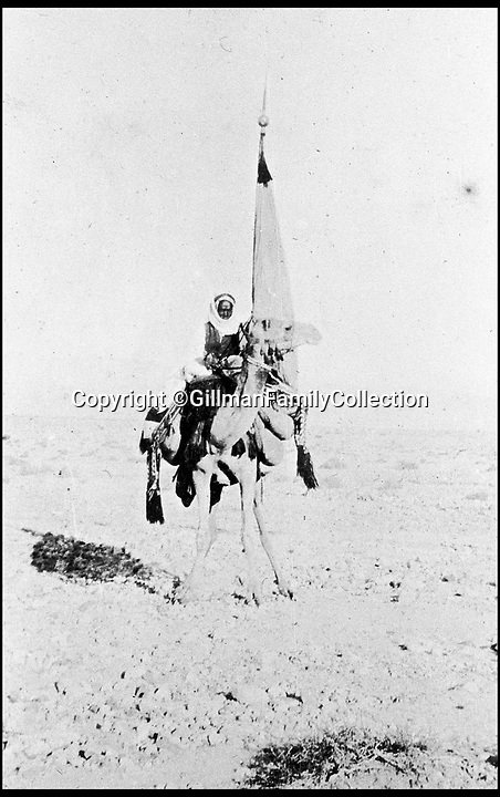 Bournemouth News (01202 558833)<br /> Pic: GilmanFamilyCollection/BNPS<br /> <br /> Feisul's standard bearer - after the war Feisul was given modern day Iraq as his reward.<br /> <br /> Fascinating never before seen photos of the Arab Revolt have revealed Lawrence of Arabia actually had help from a plucky band of British troops as well as the Arab tribesmen.<br /> <br /> A new book reveals the legendary campaign, that did much to shape the modern map of the Middle East, used cutting edge weapons like Rolls Royce armoured car's and British crewed aircraft to attack the Turkish enemy alongside the native arab army.<br /> <br /> The photos feature in military historian James Stejskal's new book Masters of Mayhem which sheds new light on T.E Lawrence's achievements fighting alongside Arab guerrilla forces in the Middle East during the First World War.<br /> <br /> They had been tucked away in the private photo albums of the descendants of soldiers who fought alongside Lawrence during the campaign.<br /> <br /> One historically important photo shows Lawrence and his driver sitting in a Rolls Royce in Marjeh Square in Damascus after it was captured in October 1918.<br /> <br /> Another documents the dramatic moment a water tower and windmill pump are blown up in the desert.