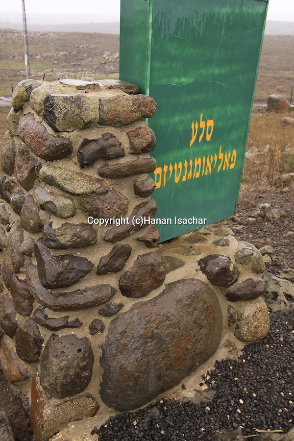The Paleomagnetism Rock in the Golan Heights