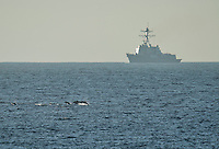 110930-N-DR144-018 PACIFIC OCEAN (Sept. 30, 2011) A pod of dolphins surfaces as Arleigh Burke-class guided-missile destroyer USS Halsey (DDG 97) maneuvers behind Nimitz-class aircraft carrier USS Carl Vinson (CVN 70) during a replenishment-at-sea. The Carl Vinson Strike Group is underway conducting operations off the coast of Southern California.  U.S. Navy photo by Mass Communication Specialist 2nd Class James R. Evans (RELEASED)