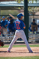 Chicago Cubs shortstop Aramis Ademan (11) during a Minor League Spring Training game against the Los Angeles Angels at Sloan Park on March 20, 2018 in Mesa, Arizona. (Zachary Lucy/Four Seam Images)