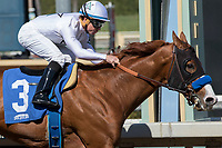 02-18-18 Santa Anita Graded Stakes