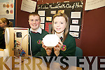 Colin Dineen and Jennifer Falvey from Causeway Comprehensive presented their project 'I'm Carbon Monoxide: Get me out of here at the ITT Science Fest on Tuesday.