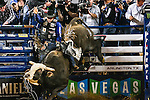 2014 Pro Bull Riding Iron Man V