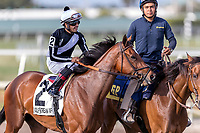 HALLANDALE BEACH, FL - MAR 31:Coach Rocks #2 trained by Dale L. Romans with Luis Saez in the irons prepares to run and win The Gulfstream Park Oaks Stakes (G2) at Gulfstream Park on March 31, 2018 in Hallandale Beach, Florida. (Photo by Bob Aaron/Eclipse Sportswire/Getty Images)
