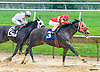 Jermey's Song winning at Delaware Park on 7/13/16