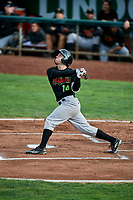 Logan Taylor (14) of the Great Falls Voyagers bats against the Ogden Raptors at Lindquist Field on September 14, 2017 in Ogden, Utah. The Raptors defeated the Voyagers 7-4 in Game One of the Pioneer League Championship. (Stephen Smith/Four Seam Images)