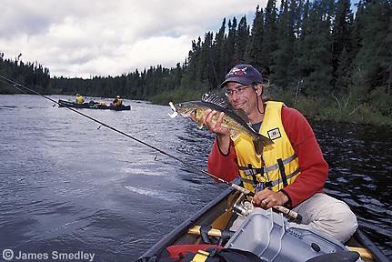 Man holding summer walleye fish