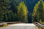 Road 208 in the Coeur D'Alene National Forest crosses the North Fork of the Coeur d'Alene River and is a scenic drive in Fall. Idaho, USA