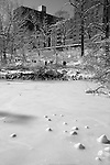 """""""Bird Sanctuary"""" Black and White Central Park New York. I had been shooting for several days in and around Manhattan when the worst storm in 20 years blew in on a Friday and lasted through Sunday.  The Governors in several states banned driving personal vehicles on the public highways for a couple days.  Being from Lake Tahoe I came prepared for the storm and was excited to capture New York City and Central Park with fresh snow.  The contrast of the abundant tall buildings surrounding Central Park was surreal. The loud noise of the city's activity was replaced with the solitude of nature inside the parks boundaries. The birds enjoyed the exposed water in the ice ponds and weren't bothered in sharing the experience with their human companions visiting the park for the day. Many families took to the park to play in the fluffy deep fresh snow with sleds for the hills and entertaining snow ball battles. I still found myself at times insulated from the park visitors and the bustling city by the absolute quietness nature offers in the isolated mountains of  my home town. Black and white photography is still my favorite so you will see many images offered in Color and BW."""