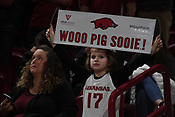 Razorback Fan Photos