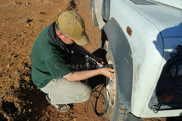 Africa, Mauritania, Sahara Desert, nr. Ouadane. After leaving the sandy piste a traveller is pumping up the tyre pressure to normal on a Land Rover Defender TD5 Station Wagon for better use on the firm dirt tracks leading to Chinguetti. --- No releases available. Automotive trademarks are the property of the trademark holder, authorization may be needed for some uses.