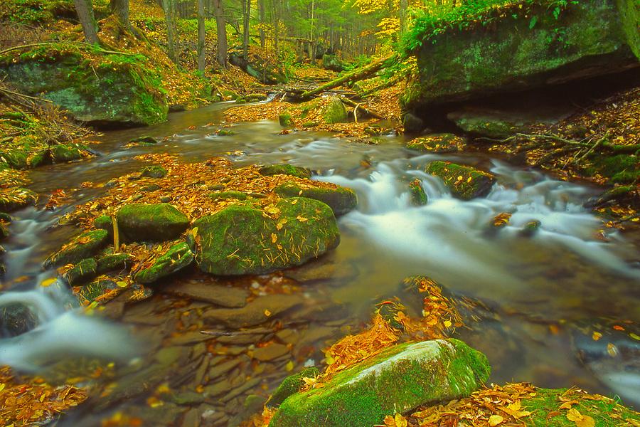 Autumn mountain stream, PA