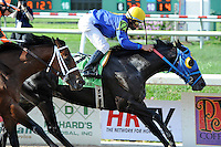 Hero of Order (no. 12), ridden by Eddie Martin Jr. and trained by Gennadi Dorochenko, wins the 99th running of the grade 2 Louisiana Derby for three year olds on April 1, 2012 at Fair Grounds Race Course in New Orleans, Louisiana.  (Bob Mayberger/Eclipse Sportswire)