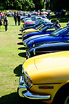 Bourne Classic Car Show