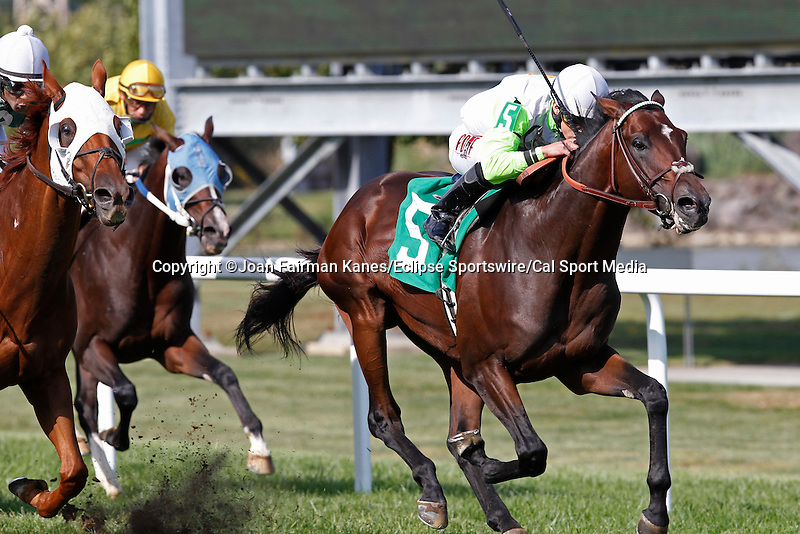 September 20, 2014: #5 Edge of Reality, Irad Ortiz Jr. up, holds off Roadhog (far left) to win the Alphabet Soup Handicap, a mile and 1/16 on the turf for Pennsylvania breds three and upward on Pennsylvania Derby Day at Parx Racing in Bensalem, PA.  Joan Fairman Kanes/ESW/CSM