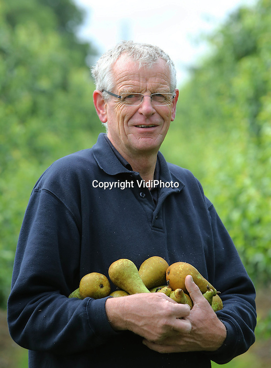 Foto: VidiPhoto<br /> <br /> RESSEN - Trotse fruitteler Nico van Olst uit Ressen van fruitbedrijf De Woerdt, met conference peren in zijn arm.