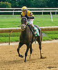 Shoppingforsilver winning at Delaware Park on 9/2/16
