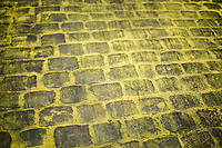 the Yellow Brick Road<br /> <br /> &quot;Le Grand D&eacute;part&quot; <br /> 104th Tour de France 2017 <br /> Team Presentation in D&uuml;sseldorf/Germany