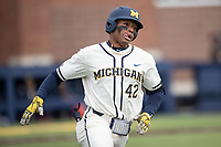 Michigan Wolverines outfielder Jordan Nwogu (42) runs to first base against the Indiana State Sycamores on April 10, 2019 in the NCAA baseball game at Ray Fisher Stadium in Ann Arbor, Michigan. Michigan defeated Indiana State 6-4. (Andrew Woolley/Four Seam Images)