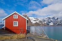 Rorbu, tourist accomodation, Hanmoy, Lofoten, Norway