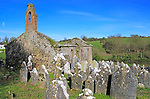 Seventeenth century Kilcredan church ruins and graveyard, County Cork, Ireland