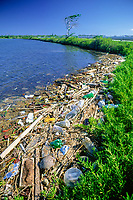 garbage, debris, Discarded plastic bottles and other manmade items pollute the Nu'u Pai Ponds Wildlife Management Wetlands. Located on the windward side of Oahu, Hawaii near the Marine Corps Base Kaneohe.