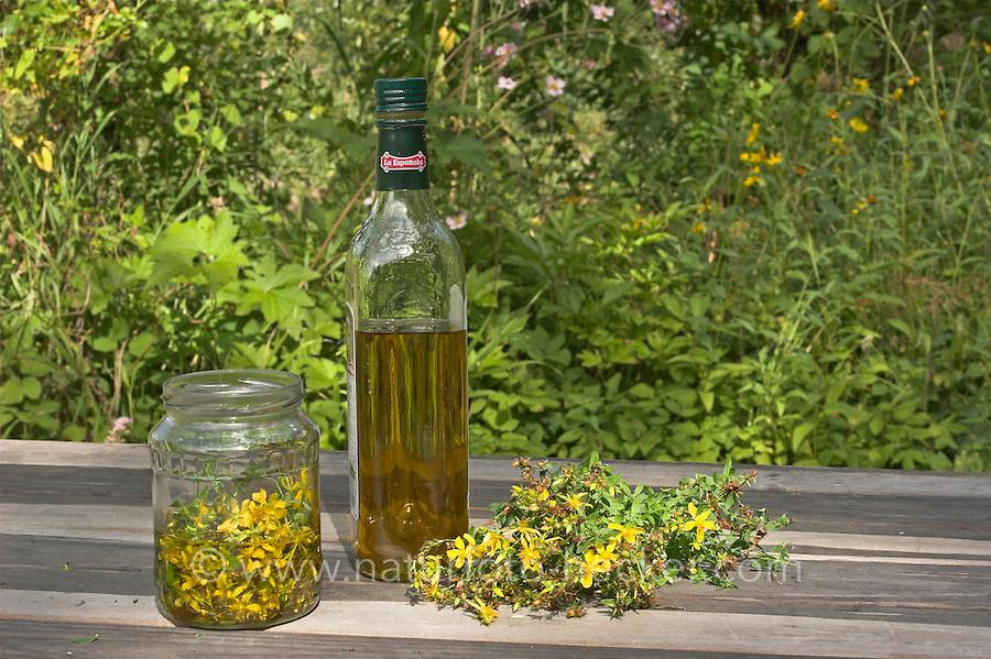Natur-Kosmetik, Kosmetik, aus Pflanzen, Kräutern, Auszug aus Johanniskraut (Hypericum) in Olivenöl