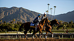 OCT 26: Breeders' Cup Filly & Mare Sprint entrant Secret Spice, trained by Richard Baltas, at Santa Anita Park in Arcadia, California on Oct 26, 2019. Evers/Eclipse Sportswire/Breeders' Cup