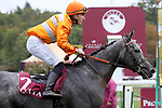 October 5, 2019, Paris (France) - Skalleti (2) with Pierre-Charles Boudot up wins the Qatar Prix Dollar (Gr II) on October 5 at ParisLongchamp Race Course. [Copyright (c) Sandra Scherning/Eclipse Sportswire)]