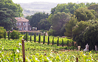 Chateau Capion in Aniane. Languedoc. The main building. France. Europe. Vineyard.