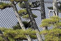 Kyoto on Tuesday 22 January 2019. <br /> Photo by Masanori Udagawa. <br /> www.photowellington.photoshelter.com