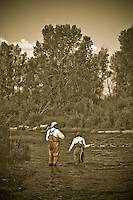 Fly Fishing, Yampa River, Steamboat Springs Colorado