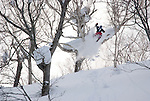 Proskier Chris Benchetler jumps over powder loaded branch for a ski movie by Teton Gravity Research